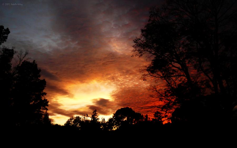 skyfyre by NatalieKelsey