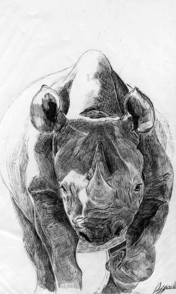 Rhino by djpailo