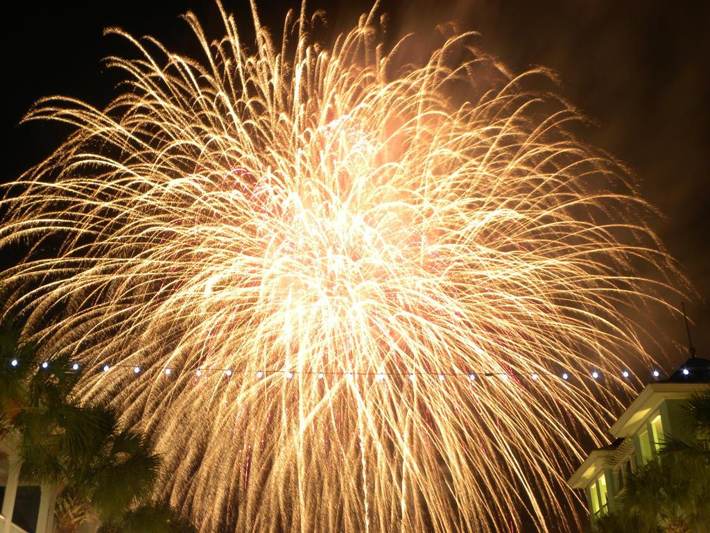Fire Works July 2015! by artsyfartsy
