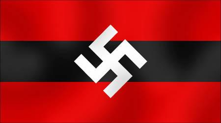 Alt. Nazi flag 5