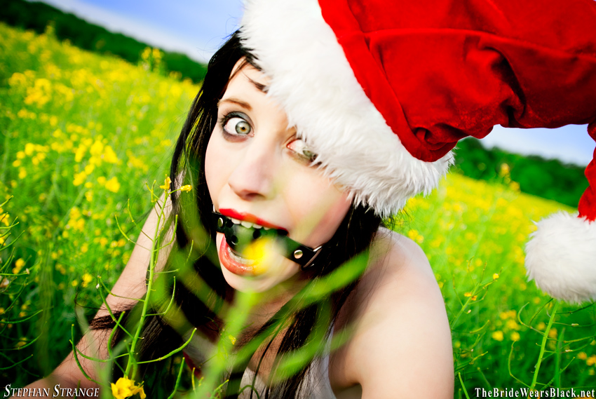 What Santa did this spring by BlackSunRising