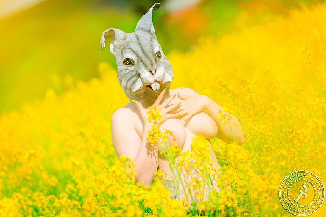 Rabbit Pet Play by BlackSunRising