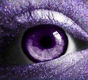 Purple by fenicksreborn