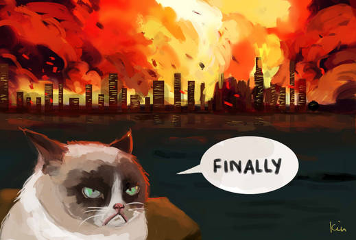 The Fan Art Mashup Challenge: Grumpy Cat