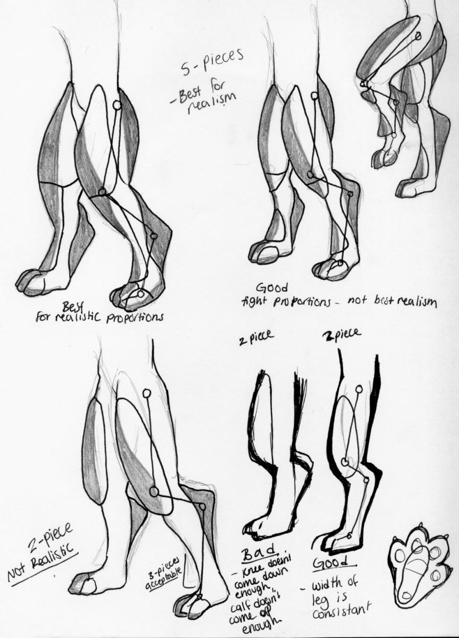 Digitigrade leg foaming study (in fursuits) by 10kk