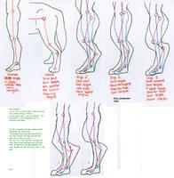 Digitigrade leg foaming proportions study by 10kk
