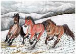 COMM: Horse Age trio