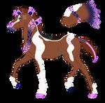 N6683 Personal Padro Foal Design