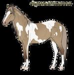 Wild Mustang Filly Wynre