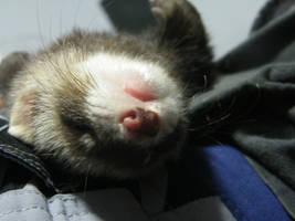when sleep is soo good... by madacha