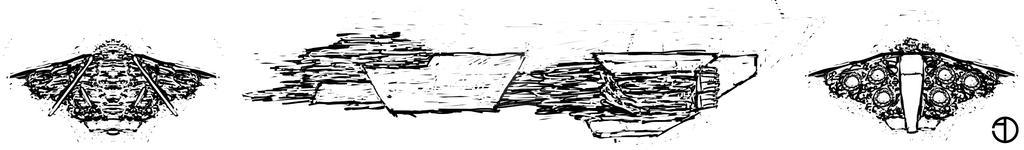 Ship Sketch for the Illustration by Jackomack