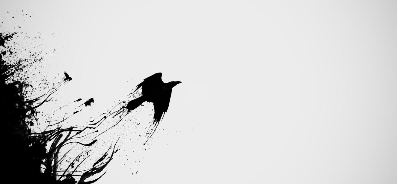 Fantastic Wallpaper Bird Minimalist - raven_released_by_epicmetal-d7px3tp  Graphic_593593.jpg