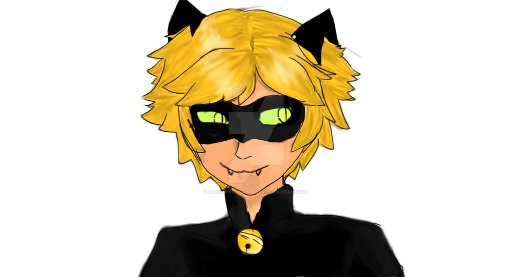 chat noir by awsomeprussialover