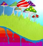 Les champignons du monde des couleurs