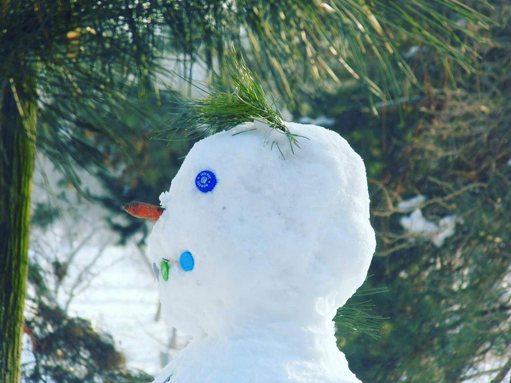 Snowman by fumdetigara