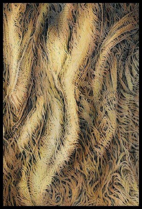 Neurodegeneration - Tangle by SalHunter
