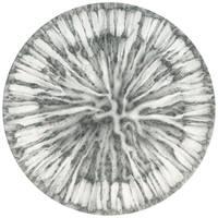 Specimen - 34 by SalHunter