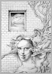 Wonder Wall by SalHunter