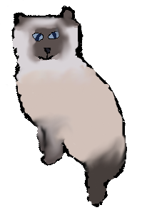 Himalayan Cat by Rainbow--Dash--MLP