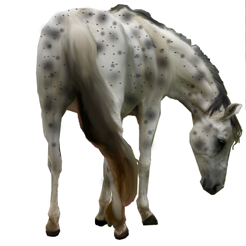 repainted/slight recolor free to use horse by dark-water-demons