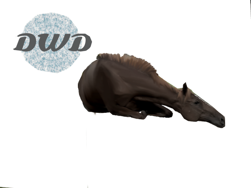 black/brown horse laying down  free for use by dark-water-demons