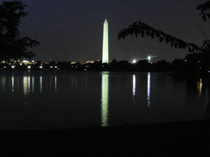 BronyCon 2014: Washington Monument 3