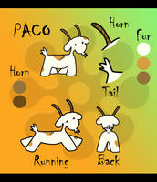 Paco- reference sheet by hyky