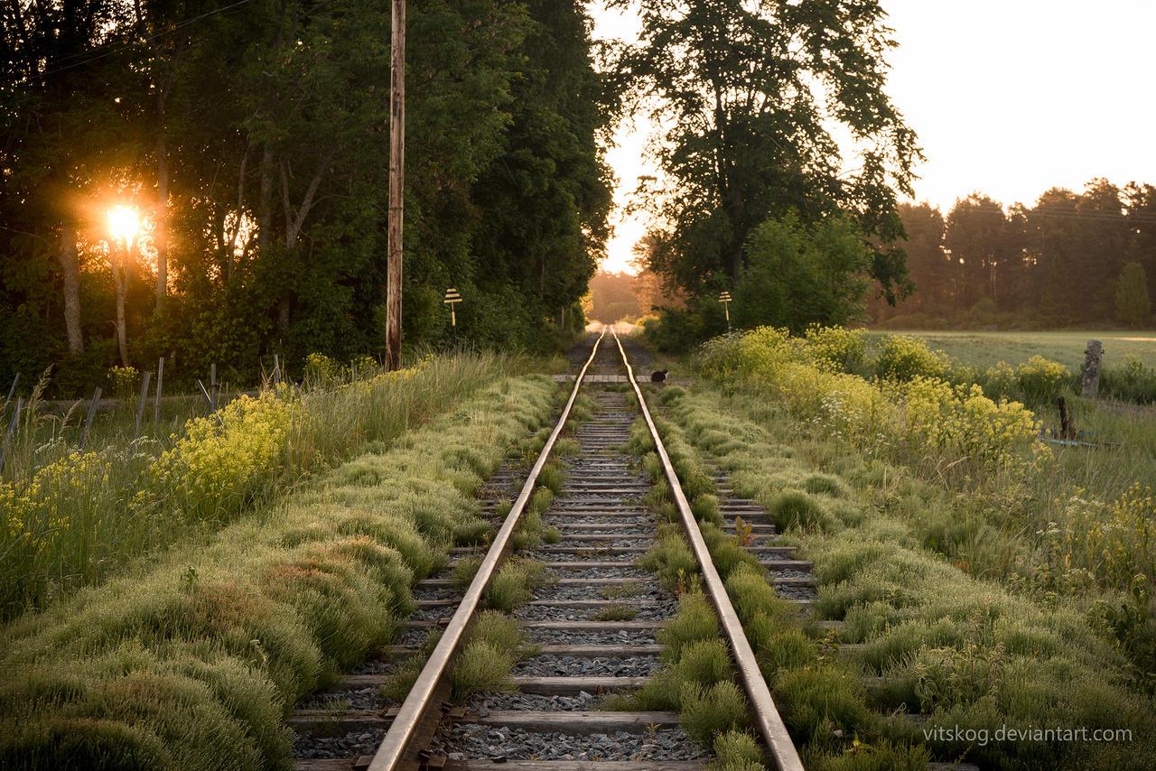 The Railway To The East II by Vitskog
