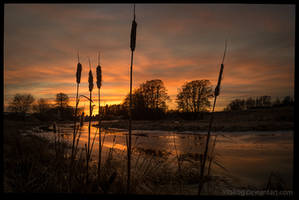 Fyris river in February by Vitskog