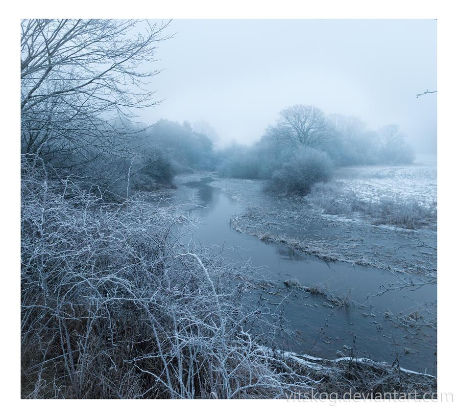A Cold Morning by Vitskog