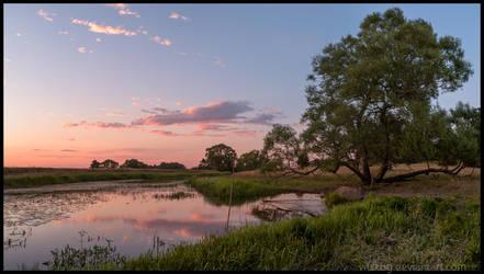 Fyris river in july