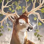 Spring Deer