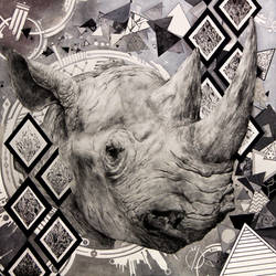 Trippy Rhino