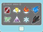 Pokemon FF: The Badges
