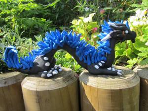 Blue maned asian dragon