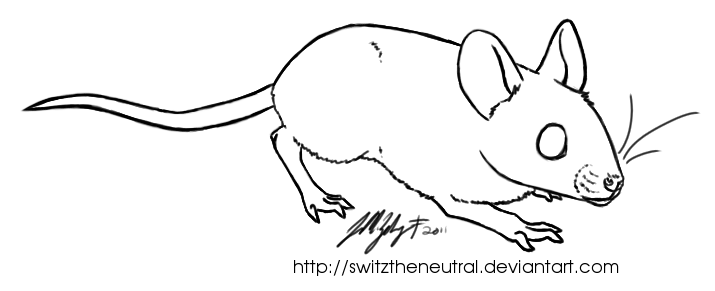 free use mouse template by pinemartenartin on deviantart