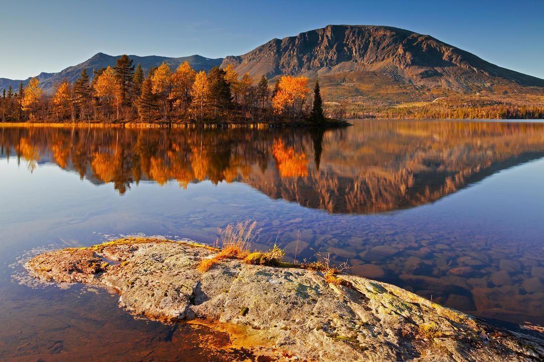 Skognshorn Autumn by FF93
