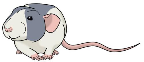 Rattie Art by Kitzira