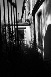 Abandoned house by ILikeToStepOnCracks