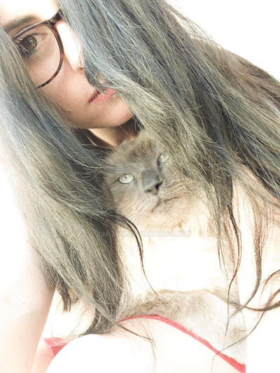Cat love  by ZiM-ZuM