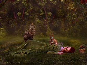 Enchanted Apple by SaFram