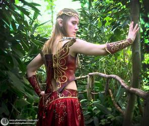 Warrior Elf costume