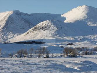 Blackmount in the Snow