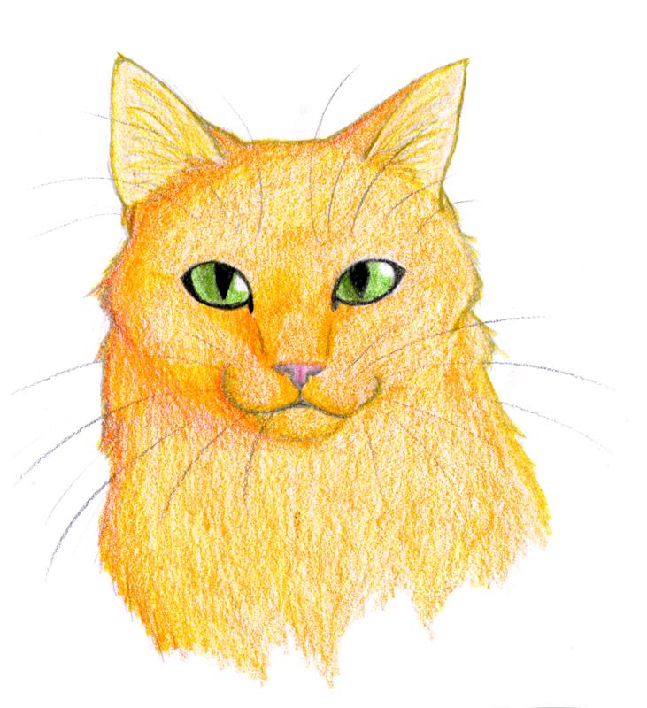 Firestar by CaptainMorwen on DeviantArt Warrior Cat Drawings Firestar