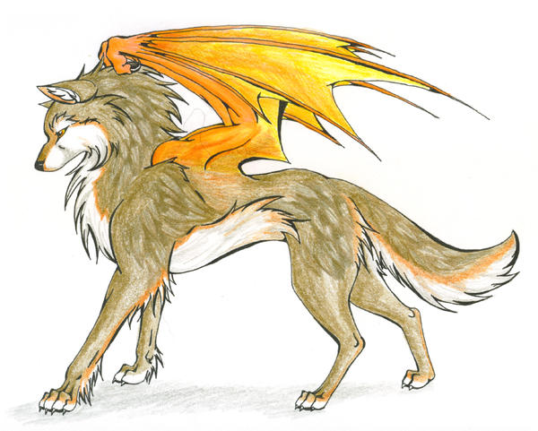 Orange Wolf Drawing Halfway To The SKY *Wo...