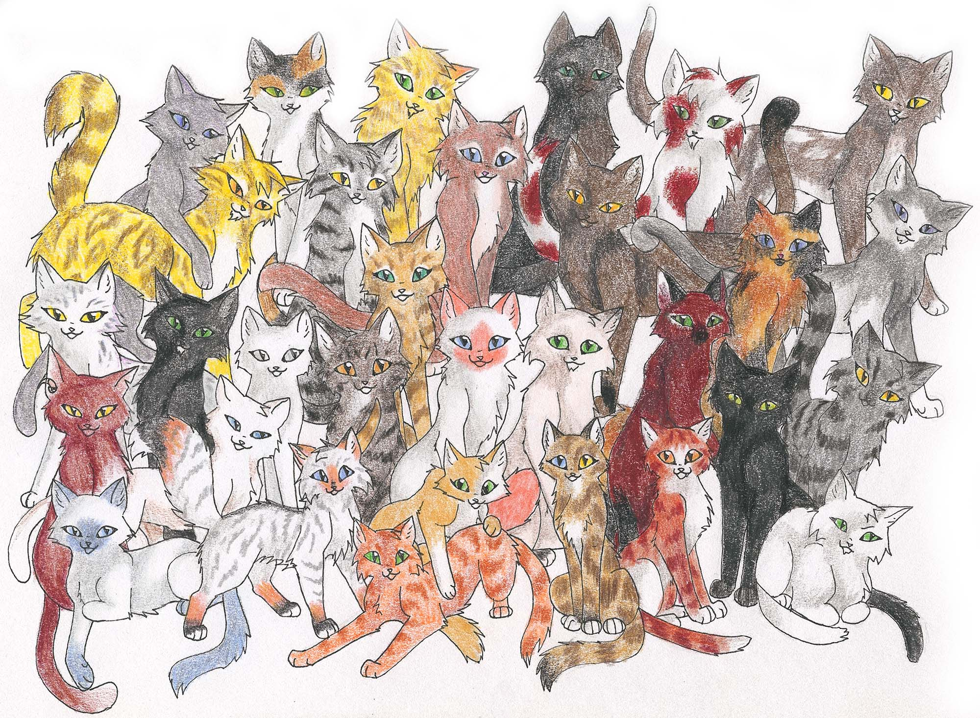 рисунки про котов отверженных термобелье