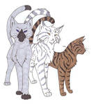 RiverClan's Finest