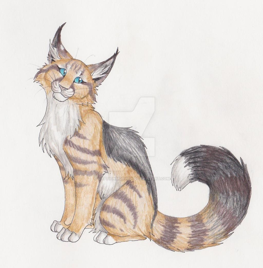 morwen jackal sand cat by captainmorwen
