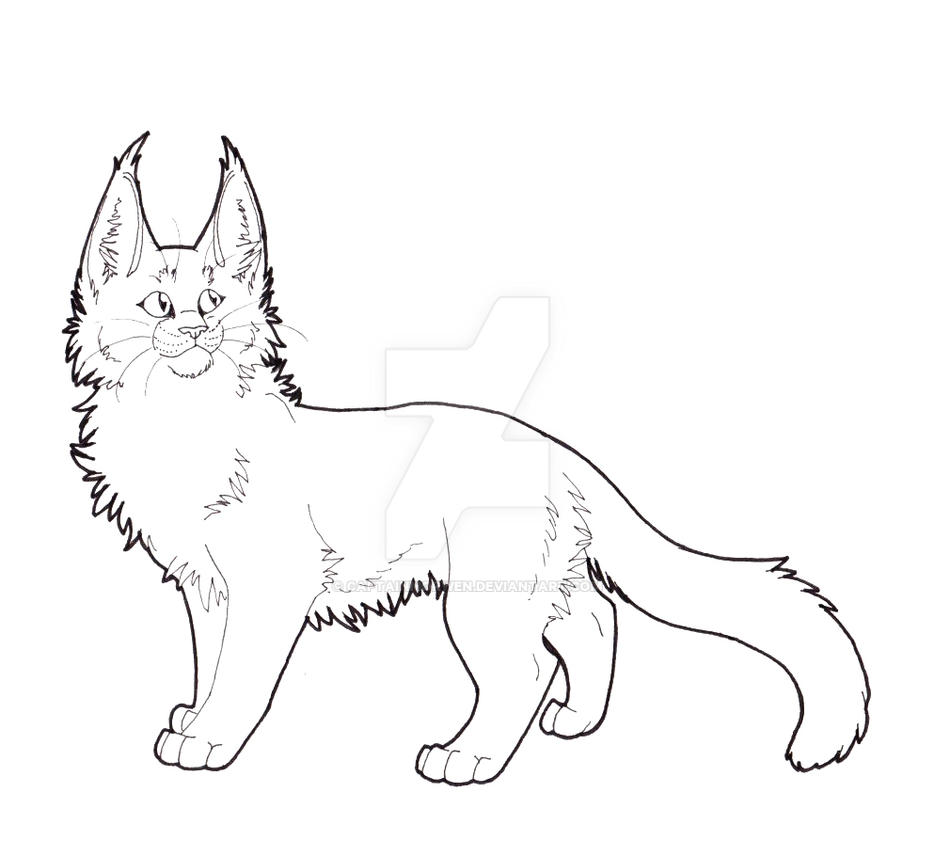 Cat LineArt by CaptainMorwen