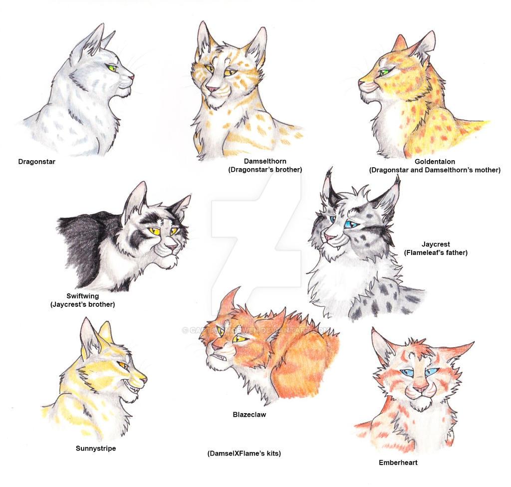 Warrior Cats Thunderclan Family Tree